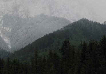 Śledztwo ws. ludzkich szczątków z Doliny Roztoki umorzone
