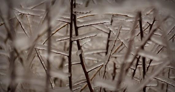 Jeszcze dziś w całym kraju utrzymuje się mroźna, zimowa aura. Jednak już w środę synoptycy prognozują diametralne zmiany.
