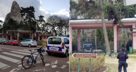 Kilkadziesiąt pawianów zdołało wydostać się z wybiegu w paryskim zoo. Ze względu na bezpieczeństwo, podjęto decyzję o ewakuacji zwiedzających.