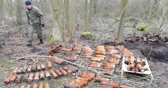 Wyjątkowo niebezpieczne znalezisko w rejonie Kojęcina na Dolnym Śląsku. Podczas wycinki drzew odkryto 41 skrzyń zawierających ponad 160 rakiet do dział przeciwpancernych. Skład amunicji odkryto zaledwie 400 metrów od zabudowań.
