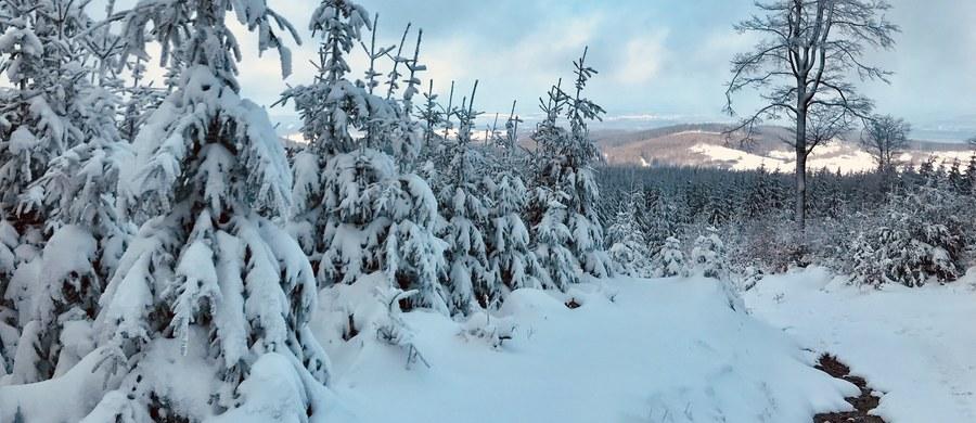4 tys. gospodarstw domowych na Podkarpaciu nie ma prądu. Powodem są intensywne opady śniegu. Najwięcej awarii było w okolicach Sanoka i Krosna – poinformował dyżurny Wojewódzkiego Centrum Zarządzania Kryzysowego w Rzeszowie.