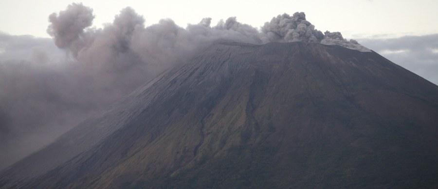 """Najwyższy wulkan w Nikaragui San Cristobal zwiększył swą aktywność. Nikaraguański Instytut Badań Terytorialnych odnotował wczoraj """"znaczny wzrost"""" wstrząsów sejsmicznych i ostrzega przed możliwą eksplozją gazów, pyłów i popiołu."""