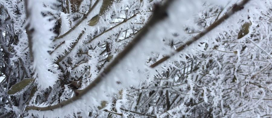 Silne opady śniegu na zachodniej Ukrainie na prawie 10 godzin sparaliżowały pracę przejścia granicznego w Szeginiach, prowadzącego do polskiego przejścia w Medyce – poinformował lwowski portal Zaxid.net.