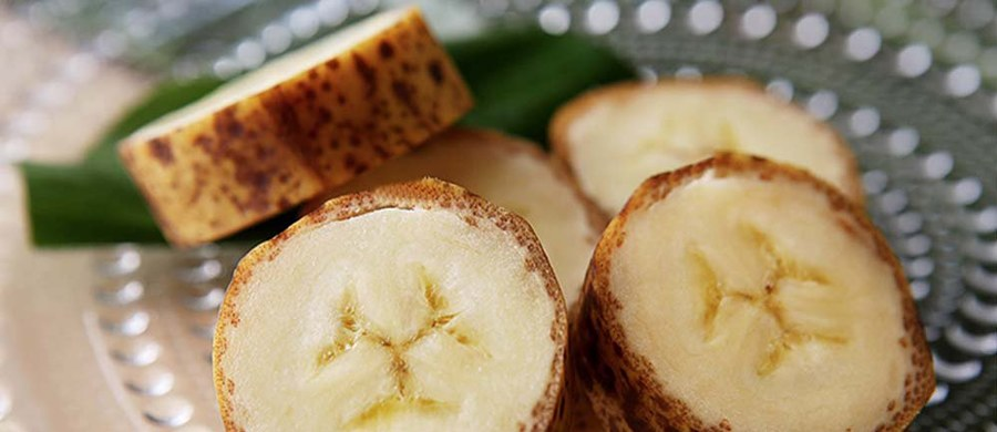Ryzyko, że ktoś poślizgnie się na skórce od banana w Japonii gwałtownie zmalało. Pewna firma zaprezentowała owoc swoich wieloletnich badań. I to dosłownie. Wyhodowała bowiem banana z jadalną skórką.