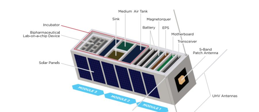 Polscy naukowcy przygotowują satelitę do testowania leków i obserwacji komórek nowotworowych w kosmosie. Robią to z myślą o astronautach, którzy w podróży np. na Marsa będą narażeni na długotrwałe działanie szkodliwego promieniowania kosmicznego.