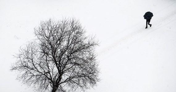 c0b65885b7112 Blisko połowa ofiar zamarzła w ciągu ostatnich dni, kiedy w Polsce panowały  silne mrozy, a temperatura w nocy w wielu miejscach kraju spadała poniżej  -20 ...