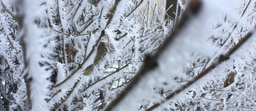 Ostrzeżenia przed silnym mrozem dla niemal całego kraju wydał Instytut Meteorologii i Gospodarki Wodnej. Dla województwa pomorskiego wydano także alert pogodowy w związku z intensywnymi opadami śniegu. Dość porywisty wiatr może także powodować zawieje i zamiecie.