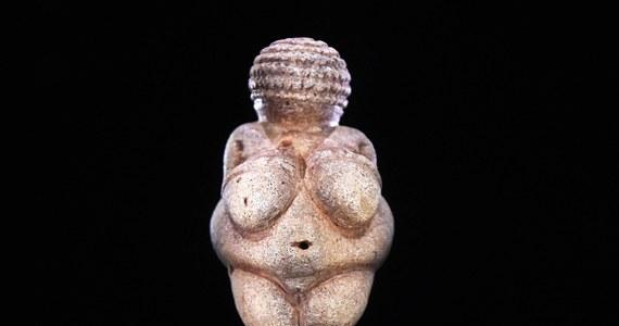Wenus z Willendorfu, jeden z najsłynniejszych i najstarszych artefaktów świata, cenzorzy z Facebooka uznali za pornografię. Usunęli zdjęcie prehistorycznej figurki sprzed prawie 30 tys. lat z konta użytkowniczki serwisu - mimo czterech odwołań od tej decyzji.