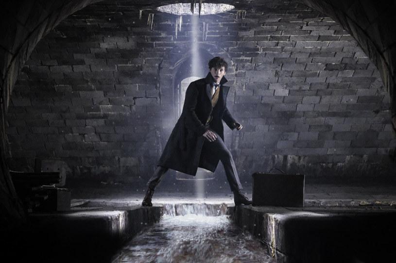 """6 listopada do polskich kin trafi film """"Fantastyczne zwierzęta: Zbrodnie Grindelwalda"""". Newta Scamandera ponownie zagra Eddie Redmayne."""