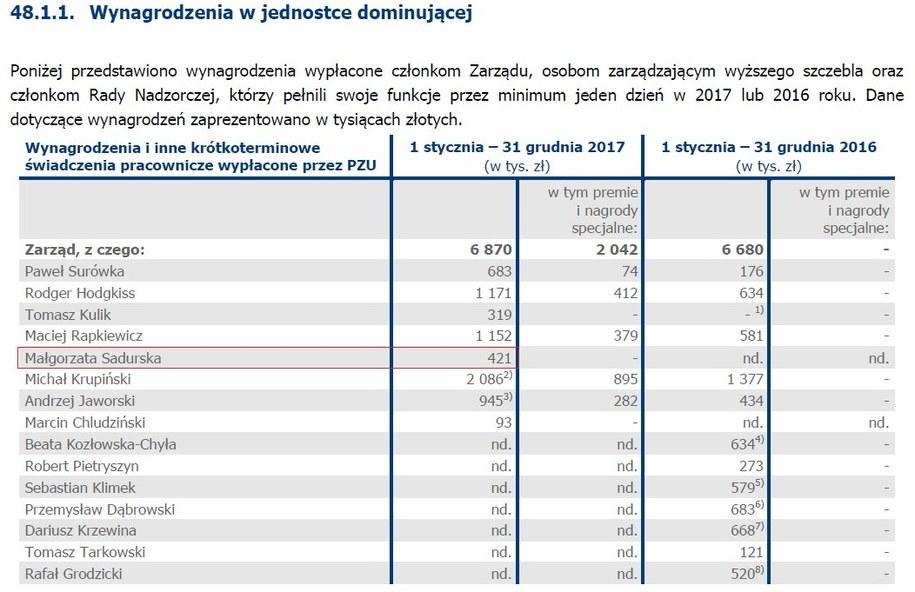 /Raport roczny PZU /