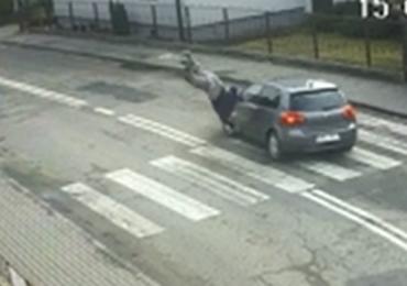 Śląskie: Groźne potrącenie na pasach. Policja opublikowała film