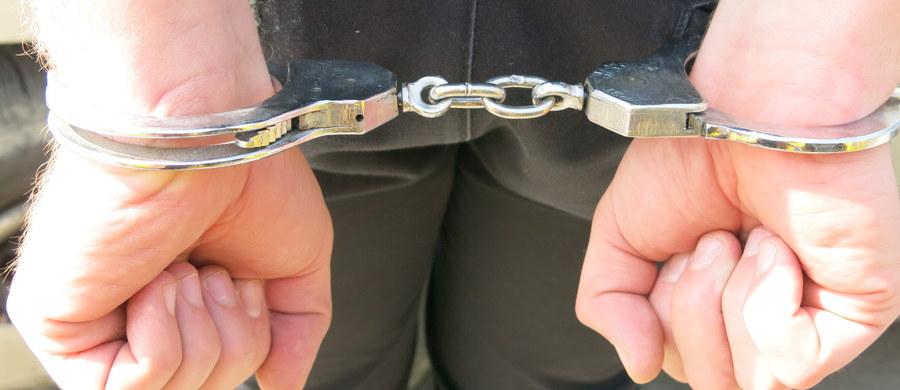 Niemieccy celnicy z Dortmundu w zatrzymanym do kontroli samochodzie na polskich numerach rejestracyjnych znaleźli kilka kilogramów narkotyków. Nielegalne substancje były ukryte w przewożonym w bagażniku telewizorze.