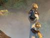 Zobacz trailer: Kaczki z gęsiej paczki