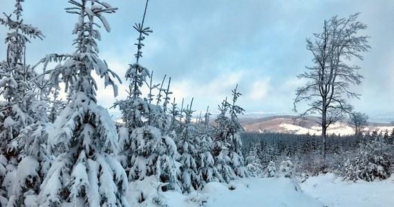 Zima wciąż wygrywa z wiosną. Śnieg przykryje niemal połowę kraju. Porywisty wiatr może powodować zawieje śnieżne - informuje Instytut Meteorologii i Gospodarki Wodnej. W rejonach podgórskich nad ranem pojawi się gołoledź.