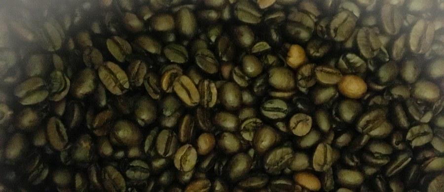 Starbucks Corp. i inne firmy sprzedające kawę lub prowadzące sieci kawiarni w Kalifornii będą musiały ostrzegać przed ryzykiem zachorowania na raka związanym z piciem kawy. Tak głosi orzeczenie sędziego sądu stanowego Elihu Berlego.