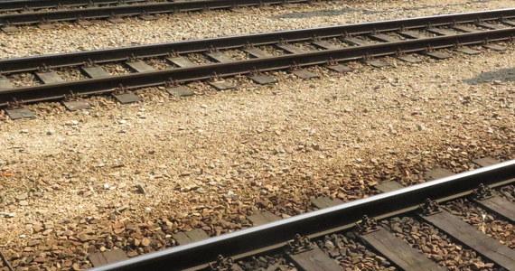 Trwający w poniedziałek od północy 24-godzinny strajk pracowników kolei doprowadził do chaosu w kursowaniu pociągów podmiejskich i dalekobieżnych w Portugalii. Odwołanych zostało kilkaset połączeń.