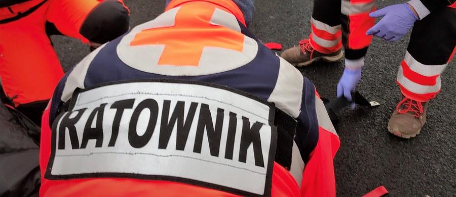 Do rana może być zablokowana autostrada A1 w stronę Łodzi. Przed godziną 21 w okolicach miejscowości Błądziejewo w woj. kujawsko-pomorskim zderzyły się dwie ciężarówki i jeden samochód osobowy. Co najmniej jedna osoba jest poszkodowana.