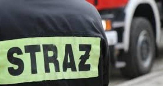 Podkarpaccy strażacy opanowali już pożar 60 hektarów łąk i nieużytków oraz 10 hektarów lasu w okolicach Poręb Furmańskich koło Tarnobrzega.