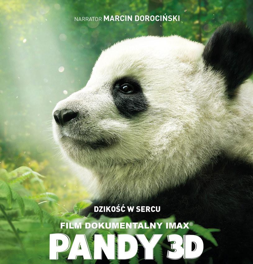 """To nie jest kolejny, zwyczajny film przyrodniczy. W filmie """"Pandy"""" można zobaczyć, jak w chińskim przedszkolu wygląda opieka nad... malutkimi pandami. Produkcja w 3D wyświetlana będzie od 20 kwietnia w kinach IMAX w sieci Cinema City w Krakowie, Warszawie, Katowicach, Poznaniu, Łodzi i Wrocławiu."""