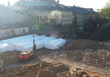 Sensacja archeologiczna w Krakowie
