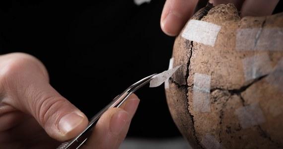 Po trzech latach prac wykopaliskowych szwedzcy archeolodzy opublikowali dowody na to, że w niewielkiej wiosce Sandby Borg w V wieku doszło do brutalnej masakry. Zabici zostali wszyscy mieszkańcy. Najprawdopodobniej padli ofiarą łowców skarbów.