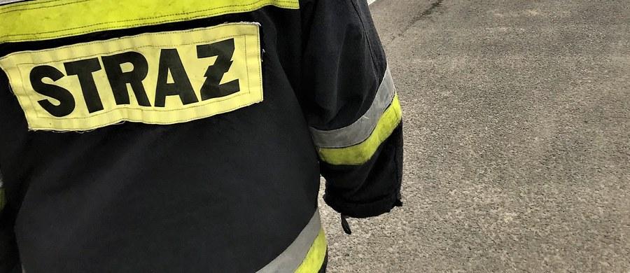 7 osób zostało rannych w wypadku busa na drodze wojewódzkiej numer 635 w miejscowości Ciemne w powiecie wołomiński na Mazowszu. Auto prowadził obywatel Ukrainy, który miał półtora promila alkoholu w organizmie.