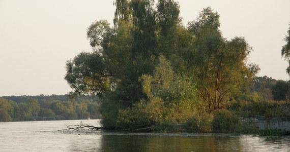 10 osób wpadło do wody po wywrotce łodzi na jeziorze Jeziorsko koło Turku w Wielkopolsce. Do wypadku - zdaniem strażaków - doszło z powodu silnego wiatru i fal.