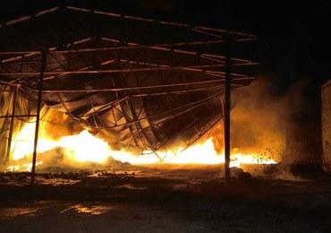 Pożar hali w Wołominie. Strażacy w akcji