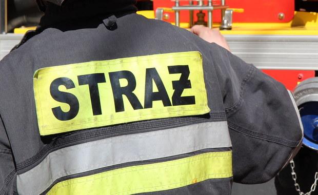 Nad ranem strażacy ugasili pożar hali fabryki w Trzciance (Wielkopolskie). Budynek spłonął, nie było osób poszkodowanych, udało się obronić inne obiekty na terenie zakładu.