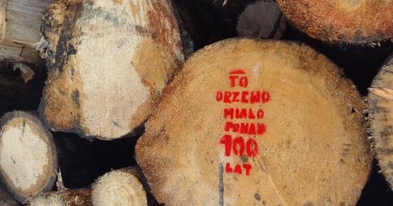 Minister środowiska Henryk Kowalczyk wydał polecenie, by uchylić decyzję byłego szefa Lasów Państwowych, która pozwoliła na usuwanie z Puszczy Białowieskiej drzew zasiedlonych przez korniki - poinformował rzecznik resortu środowiska Aleksander Brzózka.
