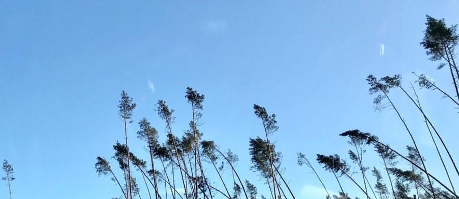 """KE zaproponowała w czwartek przyznanie 12,2 mln euro na pomoc dla Polski w związku z klęską żywiołową, która dotknęła w sierpniu 2017 roku województwa kujawsko-pomorskie, pomorskie i wielkopolskie. Nawałnica zniszczyła wówczas tysiące hektarów lasów i wiele domów. """"Kwota 12,2 mln euro może zostać wykorzystana na pokrycie części wydatków związanych z oczyszczeniem zniszczonych lasów, usunięciem powalonych drzew z dróg i torów kolejowych oraz na pomoc w odnowieniu uszkodzonej infrastruktury"""" - podała Komisja. Środki będą pochodziły z Funduszu Solidarności Unii Europejskiej (FSUE). O ich uruchomienie państwa członkowskie mogą się zwrócić do KE, by móc wesprzeć swoje długofalowe działania naprawcze po klęsce żywiołowej."""