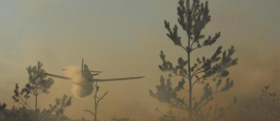 Ze względu na wysoką temperaturę i brak opadów wzrasta zagrożenie pożarami – ostrzegają Lasy Państwowe. W większości kraju mamy duże zagrożenie pożarowe. Wg danych Państwowej Straży Pożarnej od początku marca lasy płonęły 3147 razy –  aż 39 proc. to celowe podpalenia.