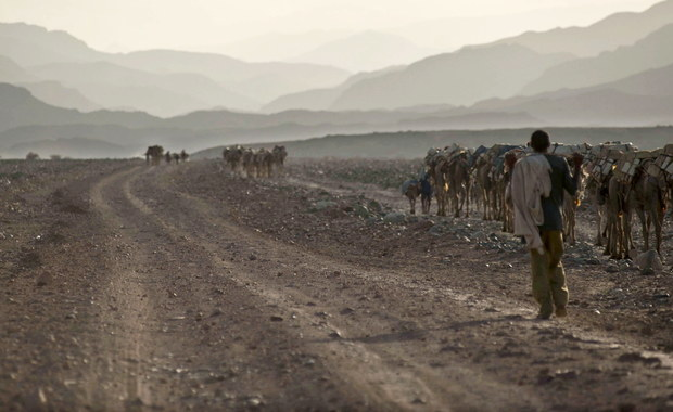 Rządząca w Etiopii partia ogłosiła, że w pełni akceptuje warunki porozumienia pokojowego z sąsiednią Erytreą z 2000 roku, co oceniane jest jako ważny i zaskakujący krok w kierunku uspokojenia nabrzmiałych przez dziesięciolecia napięć między tymi państwami.
