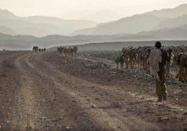 Etiopia po 18 latach akceptuje porozumienie pokojowe z Erytreą