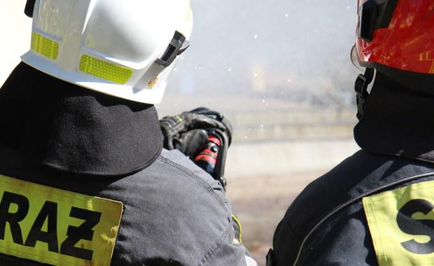 Seria pożarów na południu Mazowsza. W tej chwili strażacy w siedmiu miejscach gaszą las.