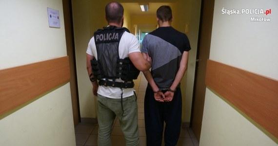 Mikołowscy policjanci zatrzymali siedmiu młodych mężczyzn w sprawie uprowadzenia 15-latka. Bandyci, żądając od swojej ofiary pieniędzy, wywieźli ją do lasu i dotkliwie pobili.