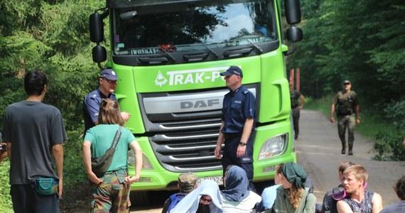 Do 6 lipca szefowie puszczańskich nadleśnictw mają zdecydować, w których sprawach przeciw ekologom wycofać wnioski o ukaranie - dowiedziała się PAP w Lasach Państwowych.