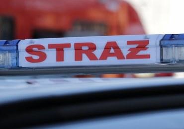 Pożary w nadleśnictwie Węgliniec. Wyznaczono nagrodę za informacje o podpalaczu