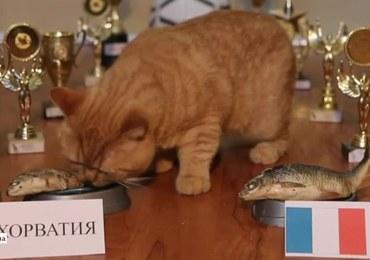 Uroczy kociak wytypował zwycięstwo Chorwatów w finale mundialu