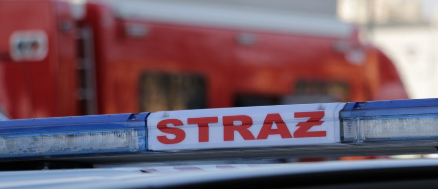 Kilkanaście osób, w tym dwoje dzieci, zostało ewakuowanych w poniedziałek nad ranem z domu wielorodzinnego w Głuchołazach na Opolszczyźnie. Okazało się, że w kamienicy oprócz mieszkań znajduje się piekarnia i to właśnie w niej doszło do pożaru. W piecu zapaliła się mąka.