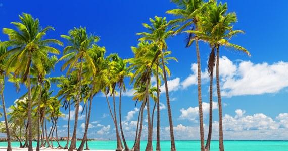 Jeśli myślisz, że prawdziwe Karaiby to Kuba czy Jamajka, a nie Dominikana, jesteś w dużym błędzie. To właśnie tu najlepiej poczujesz spokój wyspiarskiego życia, w otoczeniu rajskich plaż i w oparach lokalnego rumu.