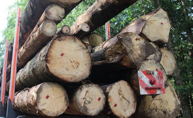 Sejm uchwalił w piątek ustawę powołującą spółkę Polskie Domy Drewniane (PDD), która w ramach programu Mieszkanie plus ma budować domy drewniane. Udziałowcami spółki będą Narodowy Fundusz Ochrony Środowiska i Gospodarki Wodnej oraz Bank Ochrony Środowiska.