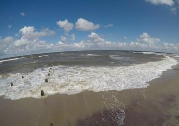 Sinice w Bałtyku. Sprawdź, gdzie lepiej się nie kąpać