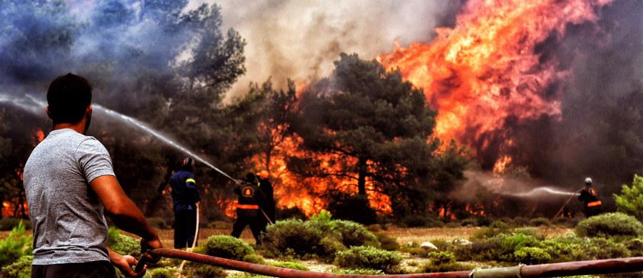 Polscy strażacy mogą wyruszyć  do Grecji, by pomóc w gaszeniu gigantycznych pożarów lasów w Attyce. Według ostatnich doniesień zginęły 74 osób, w tym dwoje turystów z Polski. W pogotowiu mamy 260 strażaków, którzy mogą pojechać do Grecji  gasić  pożary  lasów - mówi nam Leszek Suski, komendant główny Straży Pożarnej. Jesteśmy gotowi go drogi, jeśli będzie prośba ze strony greckiej - zaznacza Leszek Suski: