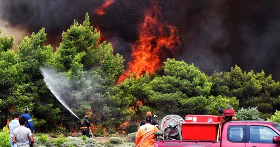 Za ostatnimi pożarami w Grecji prawdopodobnie stoją koncerny deweloperskie. W ten sposób uzyskują grunty pod przyszłą zabudowę – mówi PAP były ambasador RP w Atenach Ryszard Żółtaniecki.