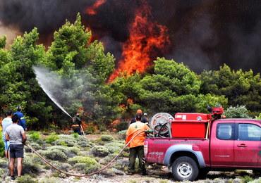 Były ambasador RP w Atenach: Za pożarami w Grecji mogą stać koncerny deweloperskie