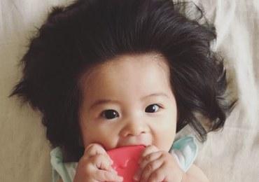 7-miesięczna Chanco jest gwiazdą internetu. Poznajcie dziecko z wyjątkowo bujną czupryną