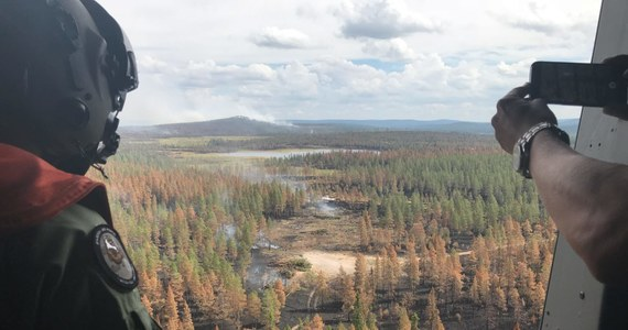 Szwedzie służby są bezsilne wobec pożarów, jakie trawią lasy od koła podbiegunowego po Bałtyk. Dan Eliasson z rządowego centrum kryzysowego przyznaje, że brakuje środków do walki z ogniem zarówno na ziemi, jak i w powietrzu. Chwali inicjatywę lokalnych władz w Trängslet, które na pomoc wezwały lotnictwo wojskowe.