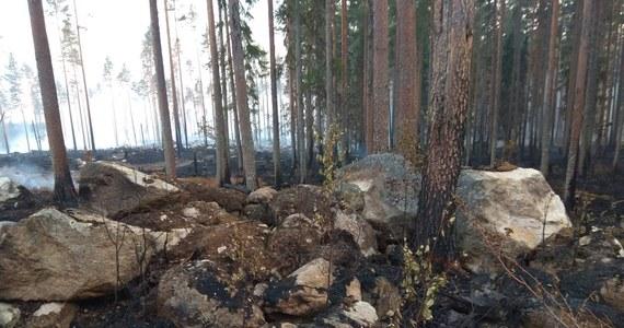 """""""Sytuacja jest bardzo poważna. Istnieje obawa, że pożary będą się rozszerzać"""" – powiedział premier Szwecji Stefan Löfven. Jego rząd prosi o wsparcie NATO w gaszeniu pożarów lasów. Lasy płoną w całym kraju. Największe pożary są w trzech prowincjach: Gävleborg, Jämtland i Dalarna. Szwecja otrzymała pomoc z Polski, Austrii, Portugalii, Włoch, Danii, Litwy, Niemiec, Francji i Norwegii. To największe wsparcie, jakiego udzieliła kiedykolwiek Unia Europejska. Teraz jednak okazuje się, że to za mało."""