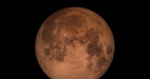 W piątkowy wieczór czeka nas niezwykłe widowisko na niebie: wyjątkowo długie całkowite zaćmienie Księżyca. Następne takie będzie miało miejsce dopiero w czerwcu 2123 roku! W naszym kraju nie będzie widoczna pierwsza faza piątkowego zaćmienia, kiedy Księżyc będzie wchodził w strefę półcienia - natomiast z chwilą wschodu Księżyca, około godziny 20:30, będziemy mogli obserwować fazę drugą, w której Srebrny Glob będzie zagłębiał się w stożek cienia całkowitego. Tuż po 21:30 rozpocznie się zaś faza zaćmienia całkowitego, która potrwa blisko 103 minuty: zaledwie o 4 minuty krócej, niż to maksymalnie możliwe!